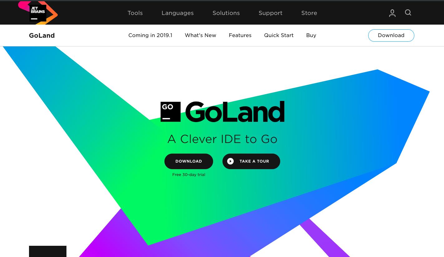 GoLang IDE